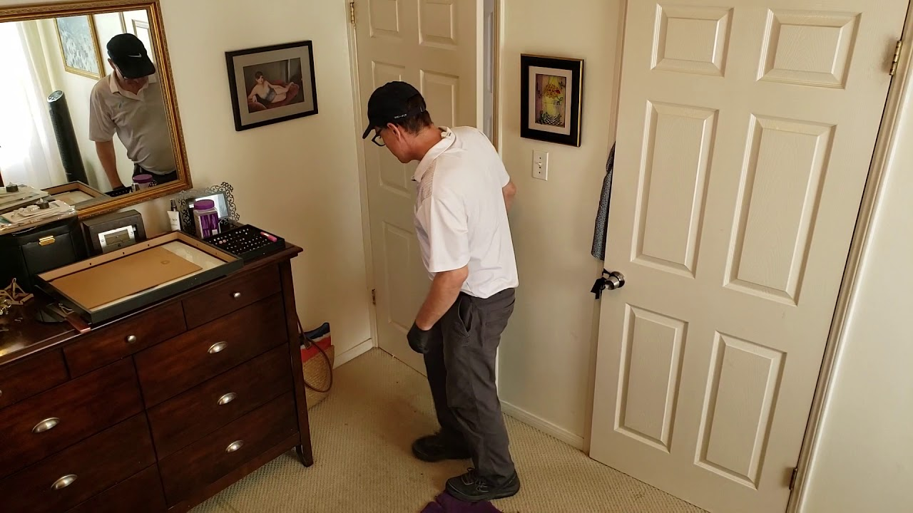 rug steam carpeting cleaning